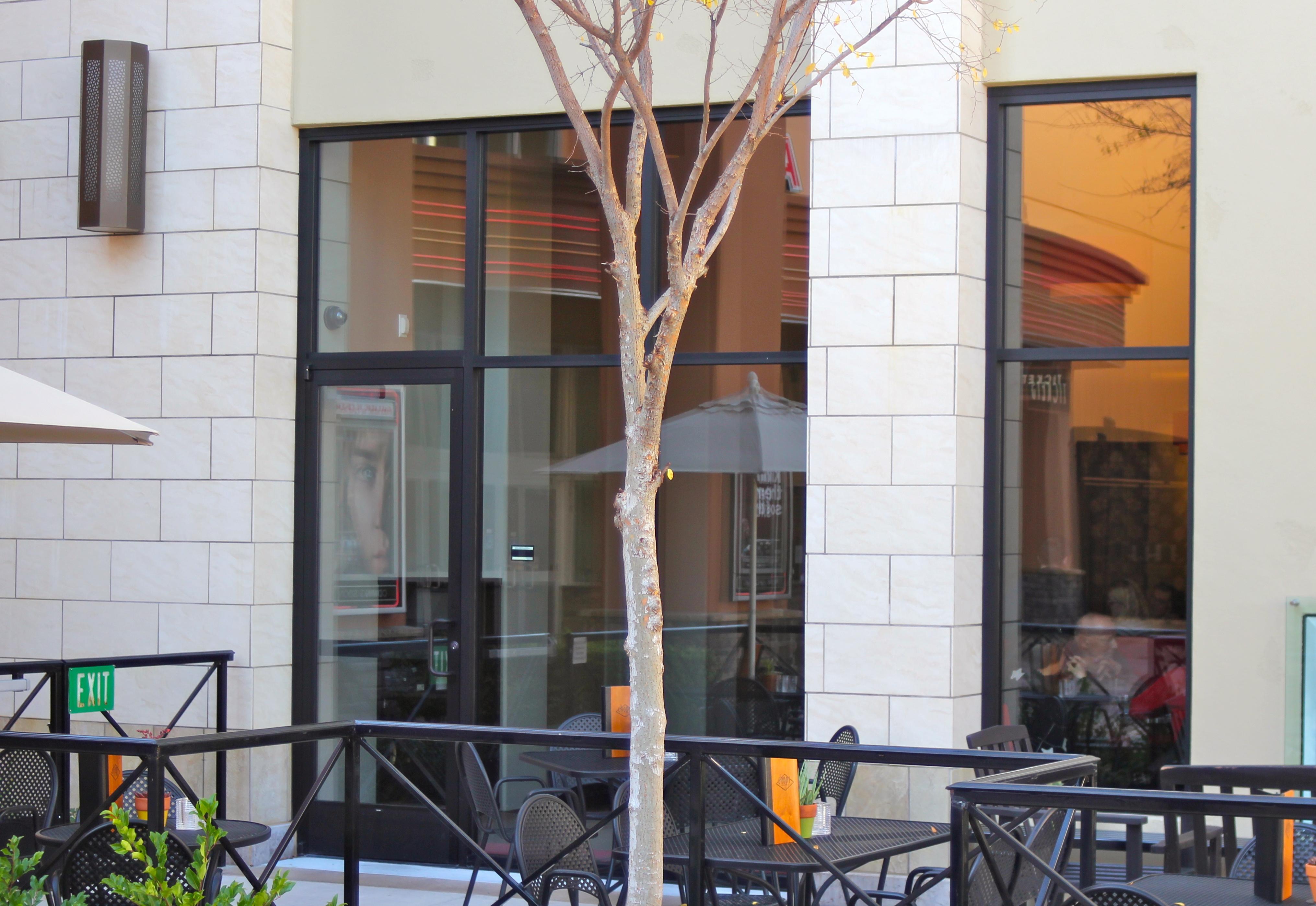 Commercial Entrances Storefronts Martinez Glass